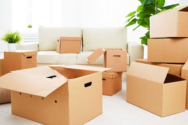 Arizona Relocation Real Estate Package for Canadians
